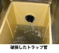 写真:hosyu02.jpg